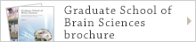 Graduate School of Brain Sciences